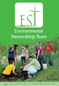 St. Andrew's Environmental Stewardship Team: Nine Years Old and Still Going Strong!