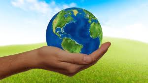 Sustainability in Action: Tips for Going Green from Texas Lutheran University