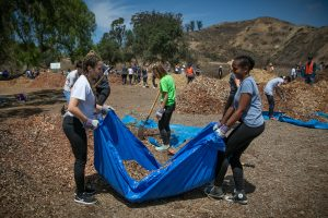 650 New Cal Lutheran Students Helped with Fire Recovery in Ventura Hills