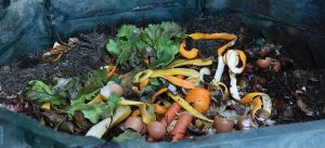 Growing a garden church from food scraps and compost