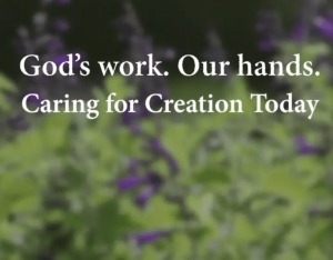 Voices from the ELCA - Caring for Creation Today